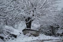 vertine neve 23 gennaio 2019 (12)