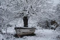 vertine neve 23 gennaio 2019 (13)