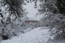 vertine neve 23 gennaio 2019 (19)