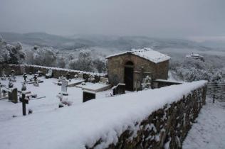 vertine neve 23 gennaio 2019 (20)