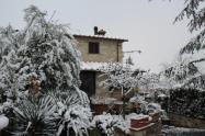 vertine neve 23 gennaio 2019 (28)