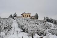 vertine neve 23 gennaio 2019 (35)