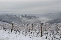 vertine neve 23 gennaio 2019 (38)