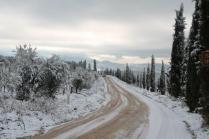 vertine neve 23 gennaio 2019 (39)