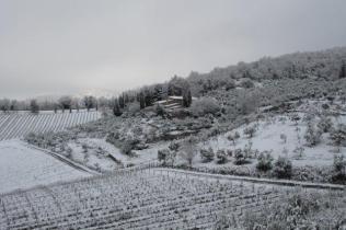 vertine neve 23 gennaio 2019 (42)