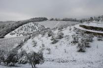 vertine neve 23 gennaio 2019 (43)