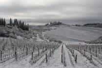 vertine neve 23 gennaio 2019 (44)