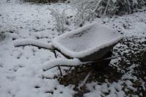 vertine neve 23 gennaio 2019 (59)