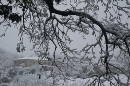 vertine neve 23 gennaio 2019 (6)