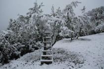 vertine neve 23 gennaio 2019 (60)