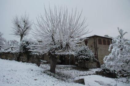 vertine neve 23 gennaio 2019 (61)