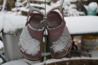 vertine neve 23 gennaio 2019 (73)
