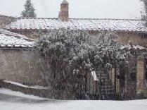 vertine neve 30 gennaio 2019 (12)