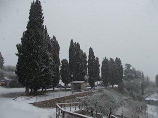 vertine neve 30 gennaio 2019 (15)