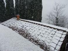 vertine neve 30 gennaio 2019 (8)