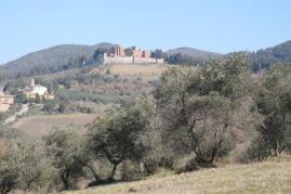 castello di brolio, podernovi, leccione, torricella,nebbiano, (9)