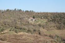 la valle dei pruni fioriti (1)