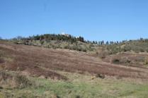 la valle dei pruni fioriti (11)