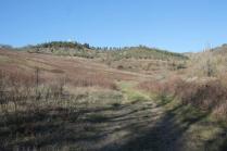 la valle dei pruni fioriti (14)