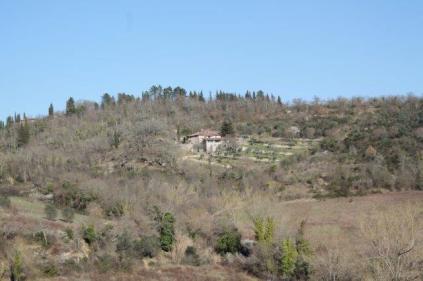 la valle dei pruni fioriti (2)