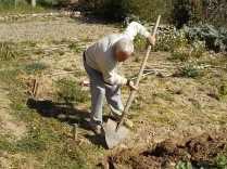 vasco e le fave fiorite dell'orto (6)