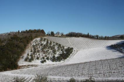 vertine neve 12 marzo 2019 (32)