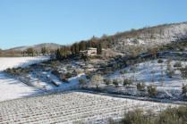 vertine neve 12 marzo 2019 (33)