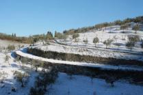 vertine neve 12 marzo 2019 (36)
