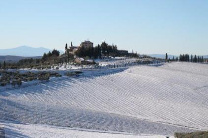 vertine neve 12 marzo 2019 (42)