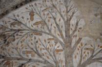 albero dei piselli, abbondanza massa marittima (3)