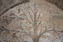 albero dei piselli, abbondanza massa marittima (4)
