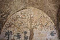albero dei piselli, abbondanza massa marittima (5)