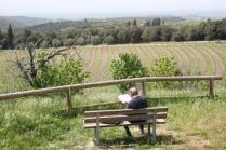 san gusmè, lettore, cavalli, vigne arceno (6)
