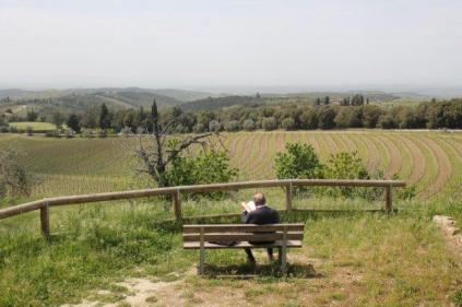 san gusmè, lettore, cavalli, vigne arceno (7)