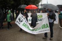 stop pesticidi marcia gaiole radda 14 aprile 2019 (21)