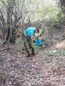 vignaioli radda pulizia strada dai rifiuti (3)