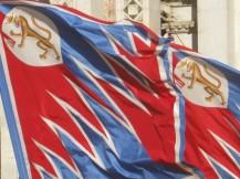 bandiere-della-pantera