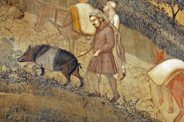 Cinta-senese-particolare-degli-Effetti-del-Buongoverno-in-campagna-di-Ambrogio-Lorenzetti