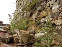 vertine mura porta da restaurare (5)