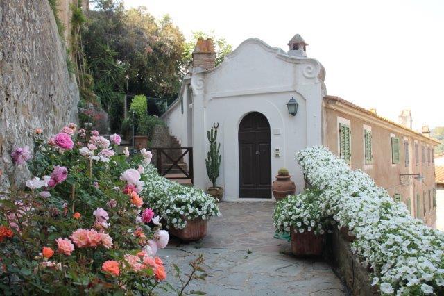 casa delle rose e del convolvolo castiglion della pescaia