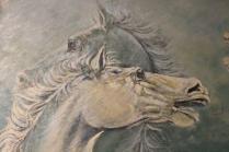 mostra cavalli in palio di roberto di jullo (10)