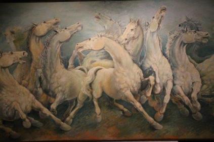 mostra cavalli in palio di roberto di jullo (16)