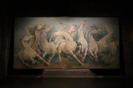 mostra cavalli in palio di roberto di jullo (8)