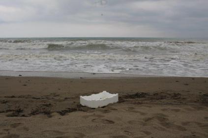 spazzatura, riva, mare (19)
