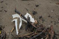 spazzatura, riva, mare (4)