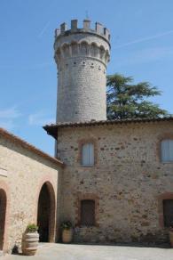 badia a monastero berardenga e susine gialle (14)