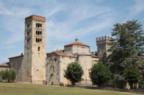 badia a monastero berardenga e susine gialle (26)
