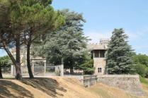 badia a monastero berardenga e susine gialle (4)