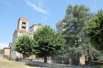 badia a monastero berardenga e susine gialle (6)