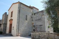 badia a monastero berardenga e susine gialle (9)